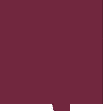 Invictus Africa Group LLC